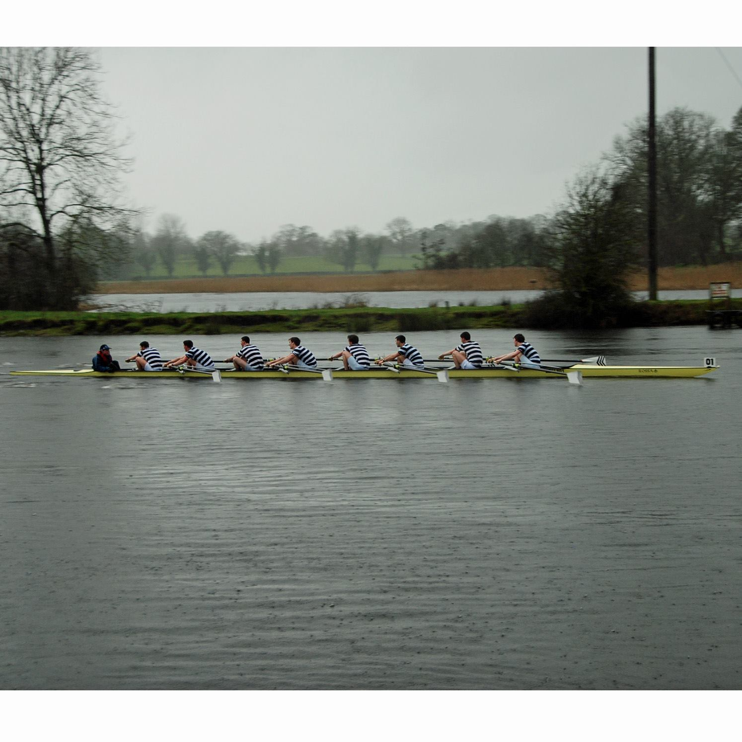 The Senior 8+ driving for home